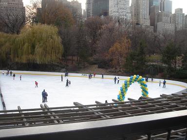 NY.Dec.2008 007