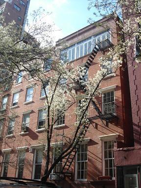 NY.Apr.2009 017