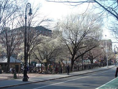 NY.Apr.2009 019