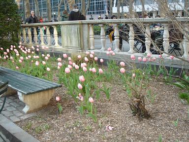 NY.Apr.2009 028