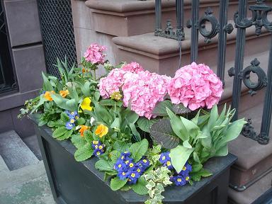 NY.Apr.2009 079