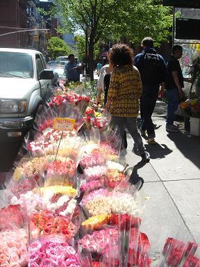 NY.May.2009 009