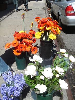 NY.May.2009 011