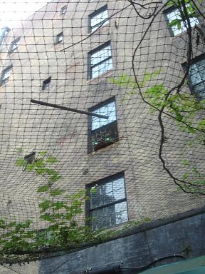 NY.Aug.2009 032