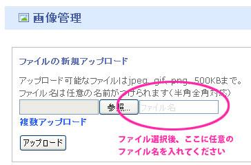 wikiname.jpg