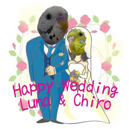 Wedding[1]_convert_20091217030816