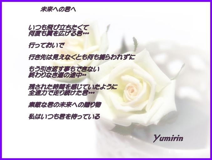 photo207rose_1024.jpg