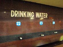 飲み水です みんなゴクゴクのんでます 俺も挑戦・・