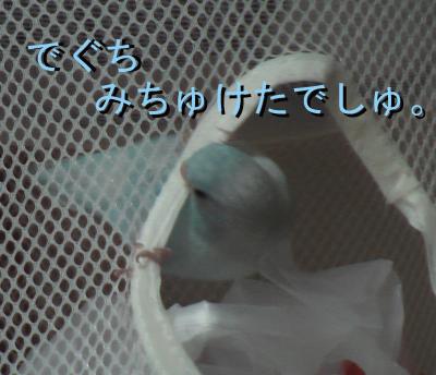 mumuko11.jpg