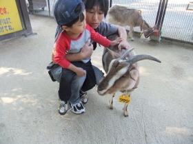 2011-10-27 智光山公園 038 (280x210)