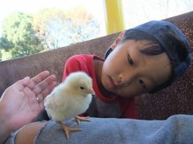 2011-10-27 智光山公園 026 (280x210)