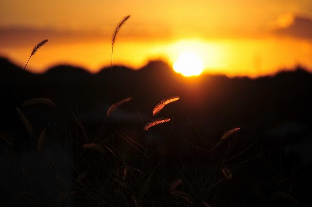 日が沈む時間だ