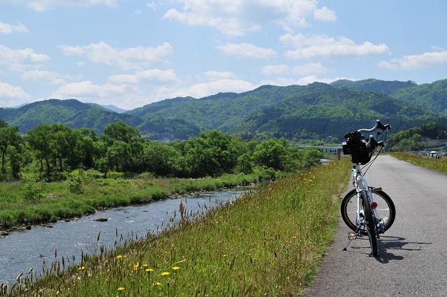 日野川土手沿いを進む