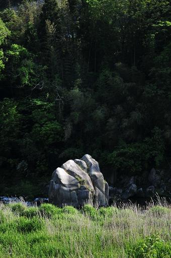 結構大きな岩もある
