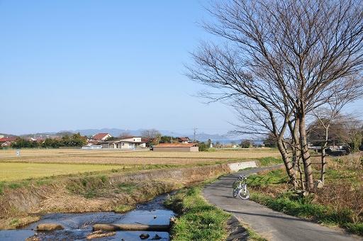 本庄川沿い