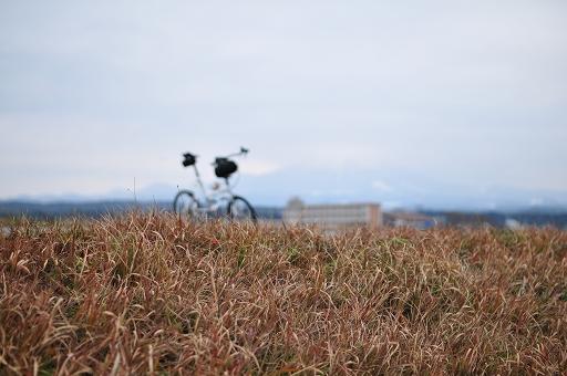 自転車を置いて修業中