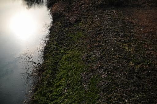 飯梨川川岸