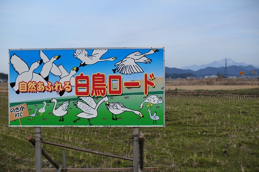 自然あふれる白鳥ロード