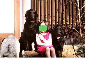 snap_itukanijinohashide_200942212219.jpg
