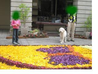 snap_itukanijinohashide_200952153852.jpg