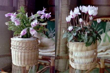 籐手芸 鉢カバー 1