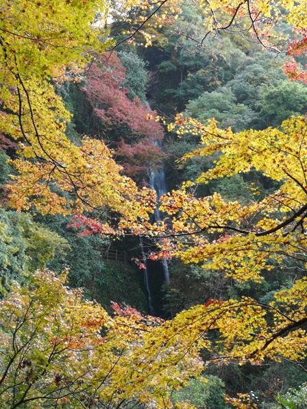 雌滝と紅葉 2