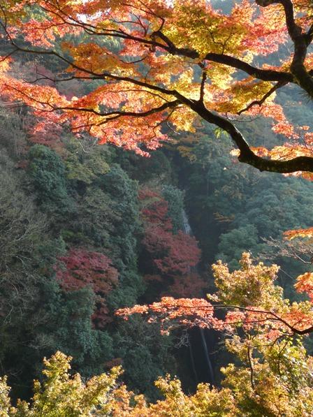 雌滝と紅葉 3