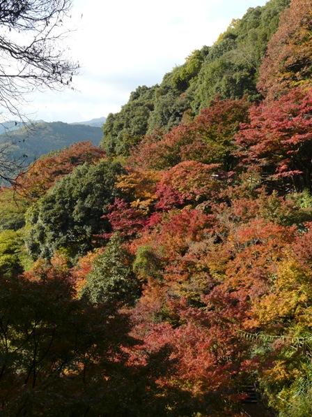 白滝公園の紅葉 1