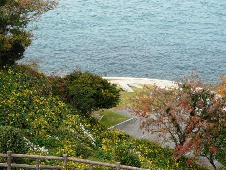大角海浜公園 1