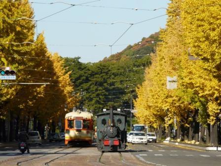 花園町の銀杏並木 3 伊予鉄道モハ50形&坊っちゃん列車