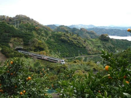 みかん畑を走る アンパンマン列車 (2000系)