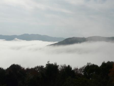 大洲・冨士山から見た雲海 2