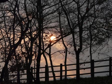 龍沢泉から見た朝日 2