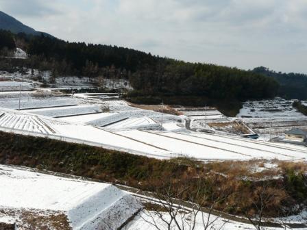 上林の雪景色 3