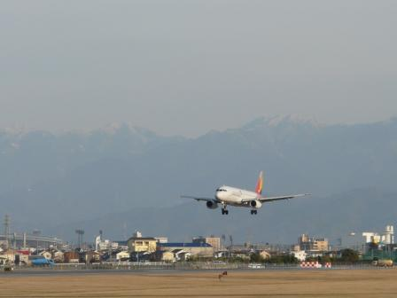 松山空港 アシアナ航空 エアバスA321 (1)