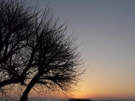 土佐湾 朝の景色 3