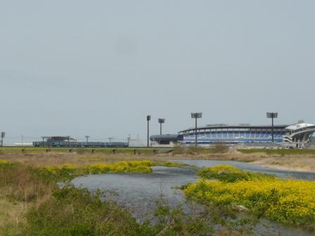 坊っちゃんスタジアム と 列車・2000系