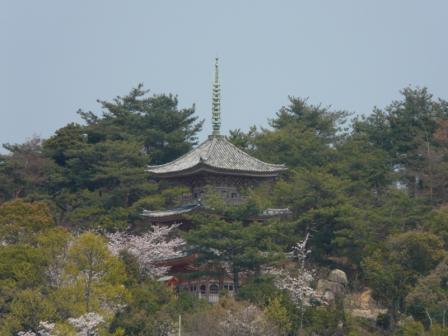 向上寺 三重塔 2
