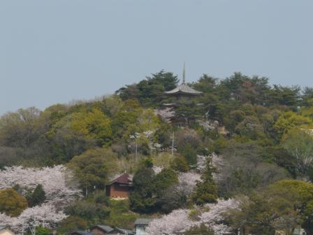 向上寺 三重塔 1