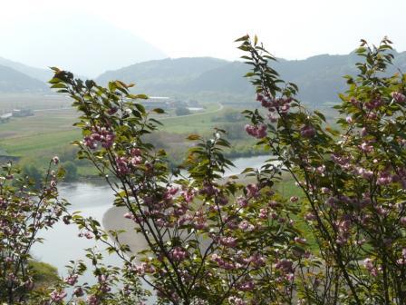 祇園公園 2