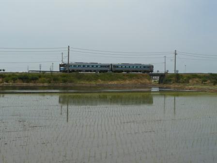 松前町 水田 & 185系