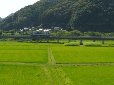 土佐くろしお鉄道 中村・宿毛線 TKT8000形 2