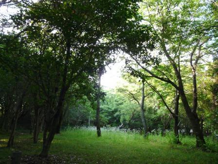 須ノ川公園