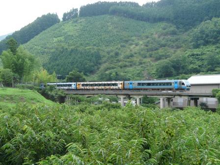2000系特急 (アンパンマン列車)