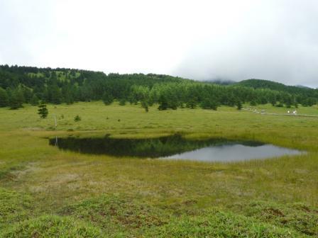 池の平湿原 木道からの景色 2