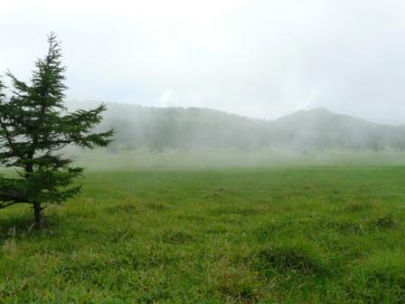 池の平湿原 木道からの景色 3
