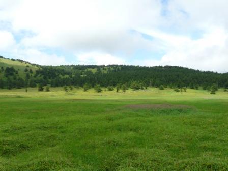池の平湿原 木道からの景色 4