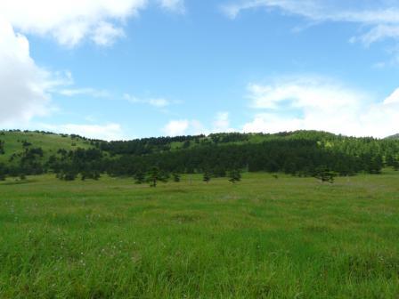 池の平湿原 木道からの景色 5