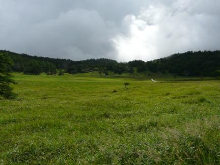 池の平湿原 木道からの景色 6