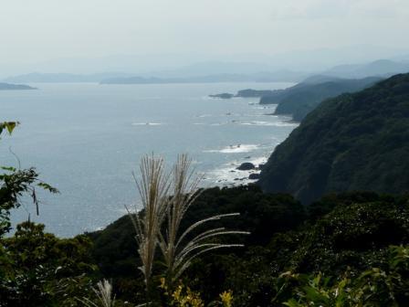 南阿波サンライン 千羽海崖 4